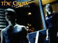 Crow03.jpg