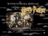 HarryPotter-Pierre05.jpg