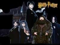 HarryPotter-Pierre09.jpg
