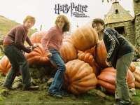 HarryPotter-PrisonnierAzkaban11.jpg
