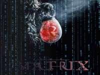 Matrix19.jpg