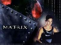 Matrix25.jpg