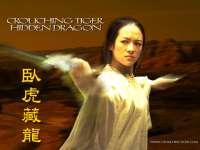 TigreEtDragon01.jpg