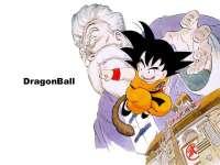 DragonBall22.jpg