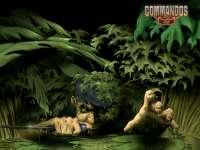 Commando07.jpg
