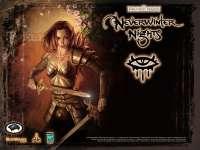 NerverWinterNights02.jpg