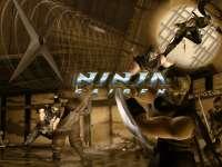 NinjaGaiden0.jpg