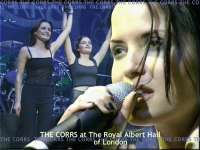 TheCorrs11.jpg