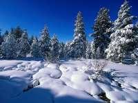 Paysages enneigés : neige n°04