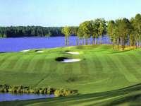 Golf02.jpg