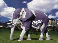 Milka-Elephant01.jpg