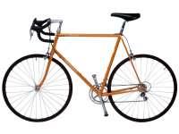 Sport_Cyclisme.jpg