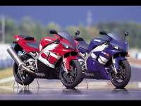 Yamaha_R1.jpg