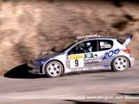 Peugeot02.jpg